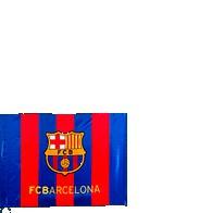 Bandera del Barça 6a82af51beb